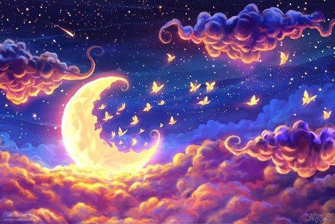 noite linda